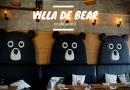 Villa De Bear ร้านอาหาร คาเฟ่พี่หมีน่ารักสุดๆจนอยากบอกต่อ